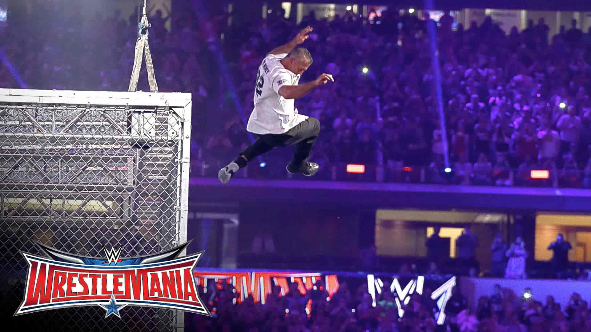 Shane McMahon jump Hell In a Cell at WrestleMania 32